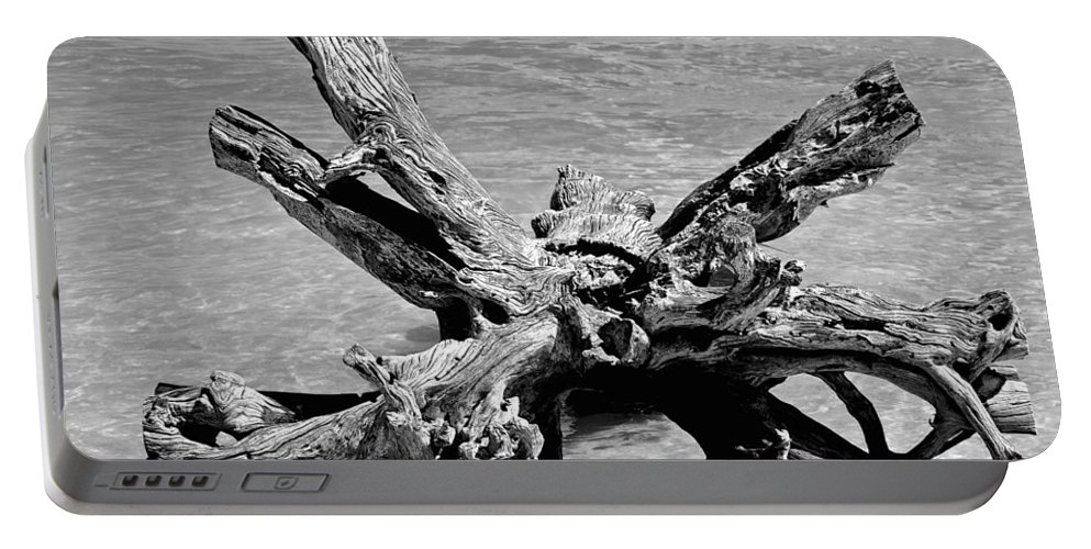 Driftwood Portable Battery Charger featuring the photograph Grounded by Charlie and Norma Brock