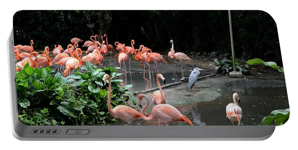 Flamingos Portable Battery Charger featuring the photograph Group Of Flamingos And Lone Heron In Water by Imran Ahmed