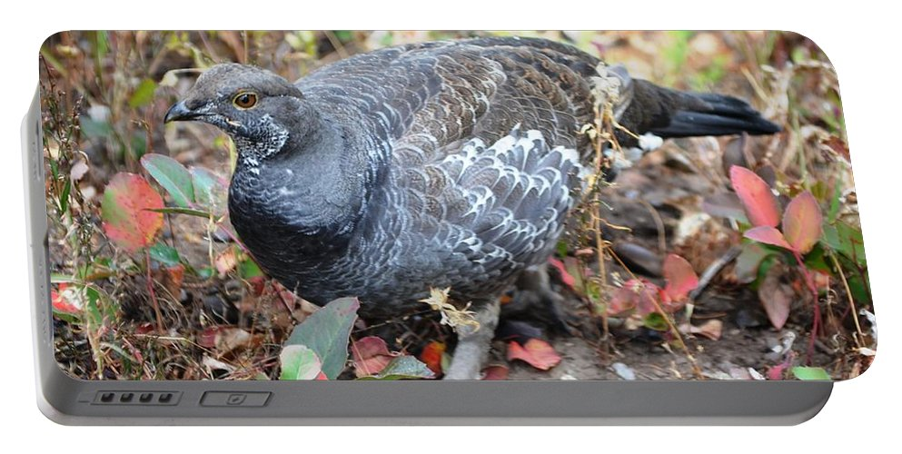 Grouse Portable Battery Charger featuring the photograph Grouse by Deanna Cagle