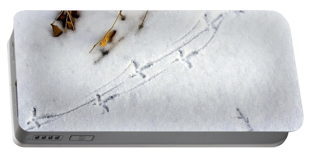 Grouse Portable Battery Charger featuring the photograph Grouse Tracks by Timothy Flanigan