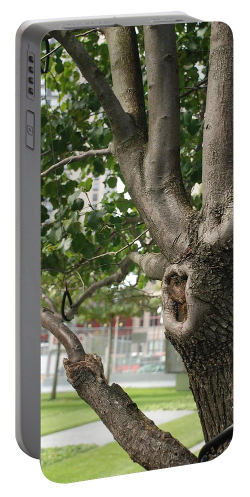 Wtc Portable Battery Charger featuring the photograph Growth On The Survivor Tree by Rob Hans