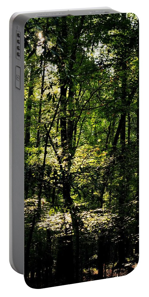 Guardians Of The Forest Portable Battery Charger featuring the photograph Guardians Of The Forest by Maria Urso