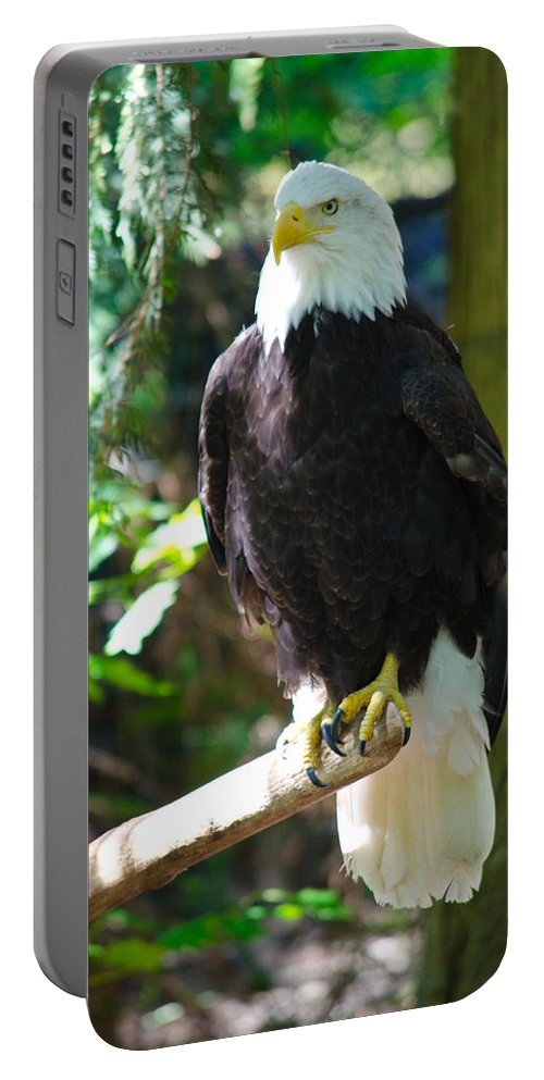 Bald Eagle Portable Battery Charger featuring the photograph Guarding Liberty by Tikvah's Hope