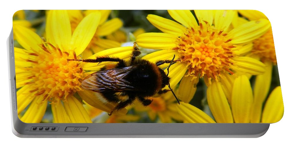 Nature Portable Battery Charger featuring the photograph Hairy Visitor by Loreta Mickiene