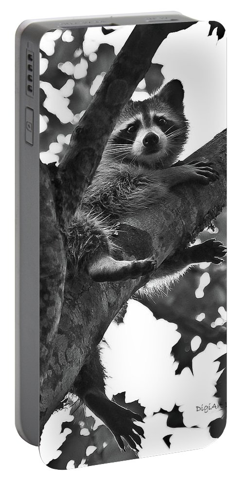Raccoon Portable Battery Charger featuring the photograph Hangin Out by DigiArt Diaries by Vicky B Fuller