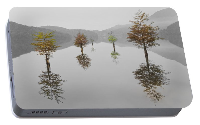 Appalachia Portable Battery Charger featuring the photograph Hanging Garden by Debra and Dave Vanderlaan