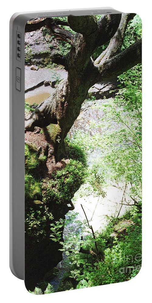 Tree Wales Landscape Nature Expressionist Natural Gaia Britain Portable Battery Charger featuring the photograph Hanging Tree by Neil Pollick