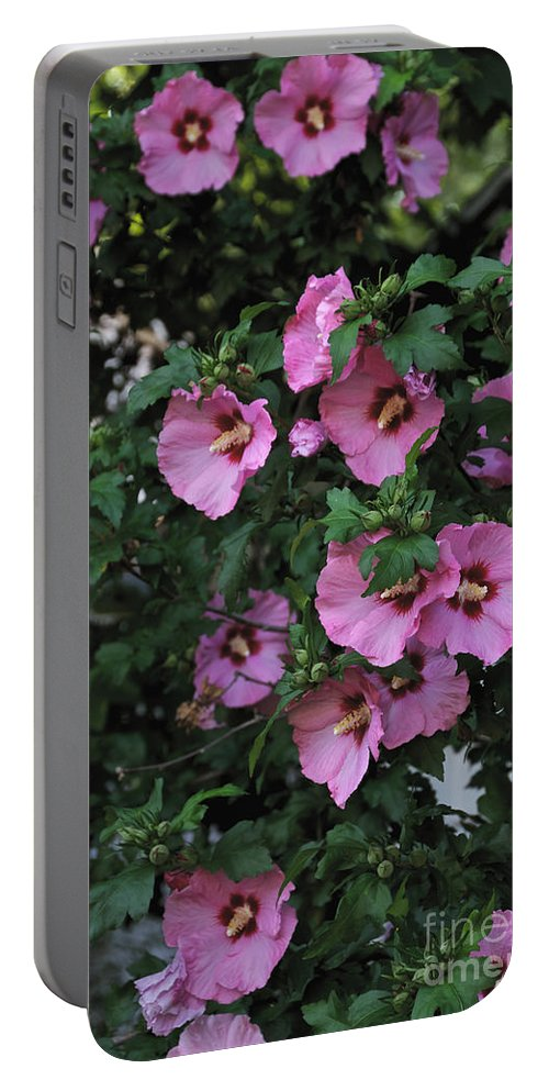 Pink Portable Battery Charger featuring the photograph Hanging With Friends by William Norton