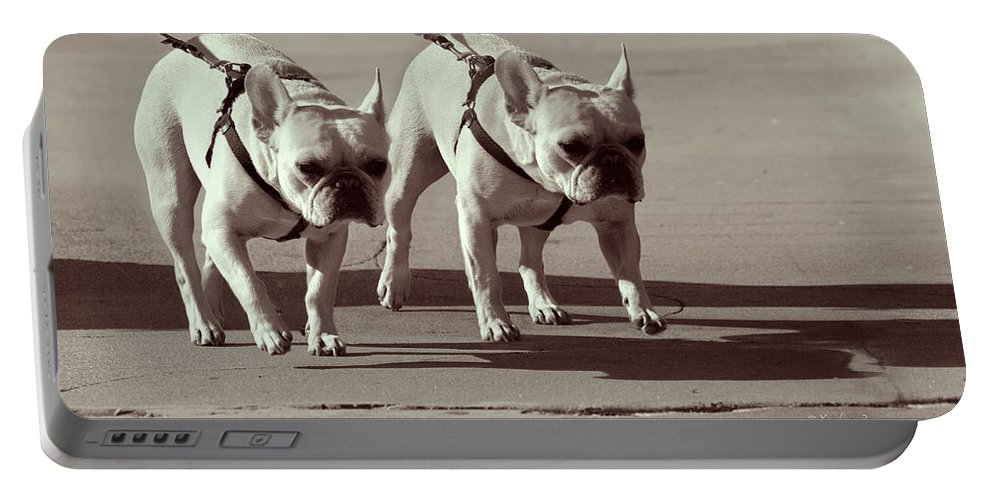 Dogs Portable Battery Charger featuring the photograph Happy Dogs 14 by Xueling Zou