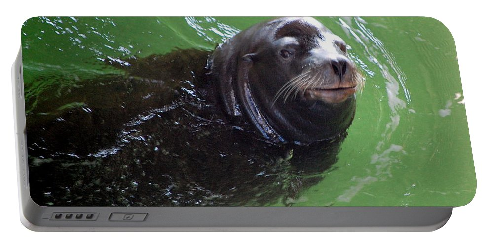 Animal Portable Battery Charger featuring the photograph Happy Seal by AJ Schibig