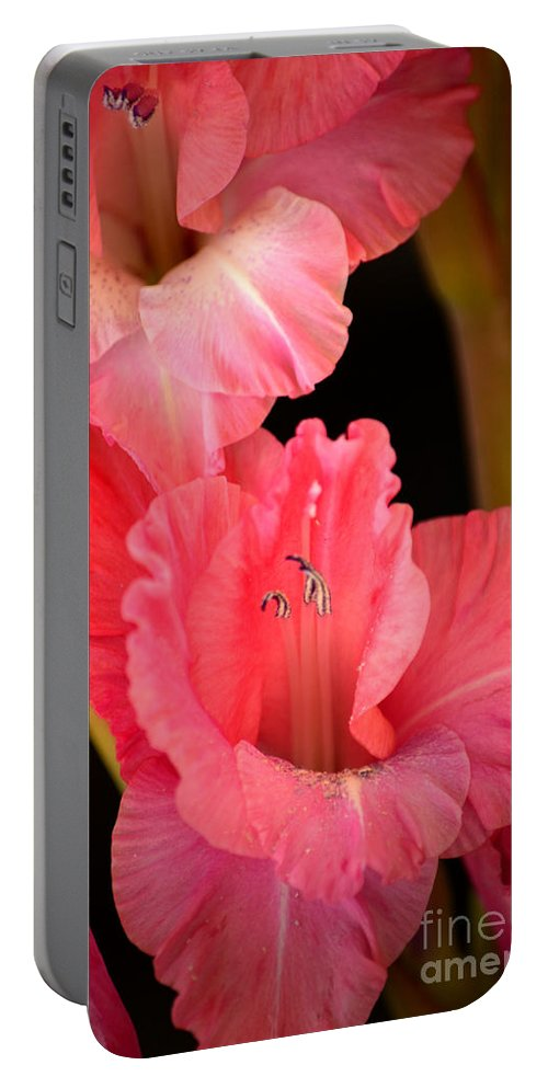 Pink Gladiolus Portable Battery Charger featuring the photograph Happy To Be Glad by Deb Halloran