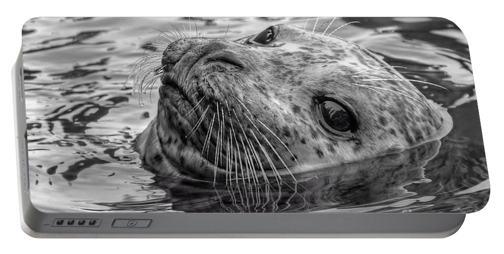 Black And White Portable Battery Charger featuring the photograph Harbor Grey by James Anderson