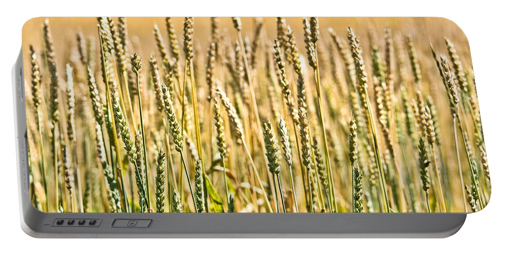 Wheat Portable Battery Charger featuring the photograph Harvest Time by Cheryl Baxter