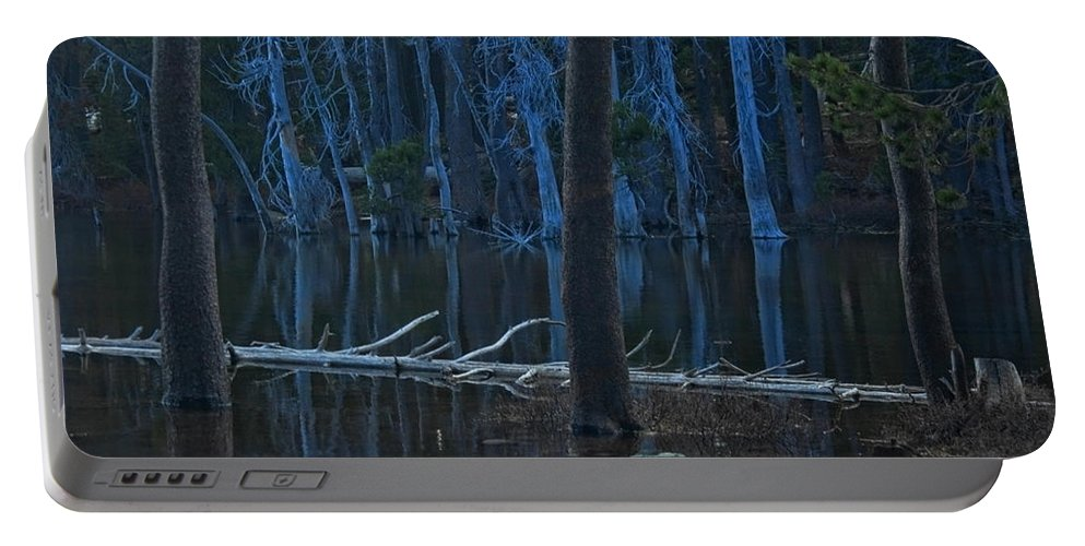 Lake Portable Battery Charger featuring the photograph Haunted Forest by Donna Blackhall