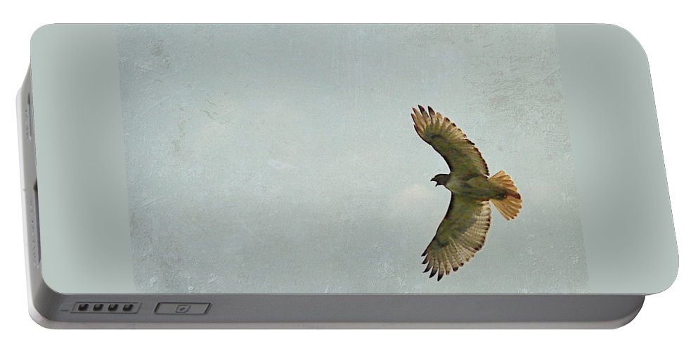 Hawk Portable Battery Charger featuring the photograph Hawk by Cassie Peters