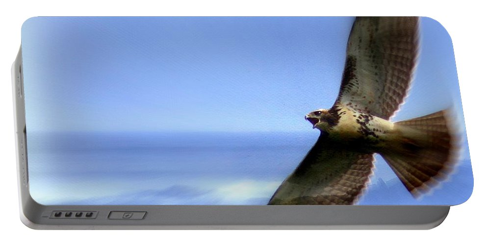 Hawk Portable Battery Charger featuring the photograph Hawk - Screams Of The Ocean by Travis Truelove
