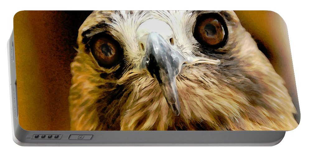 Hawk Portable Battery Charger featuring the photograph Hawkeye by Lois Bryan