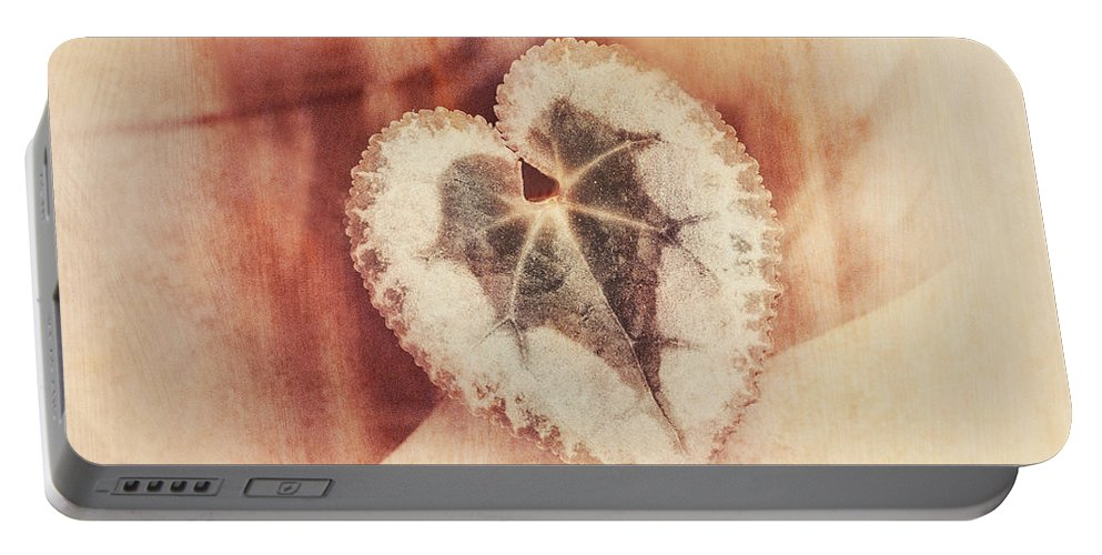 Heart Portable Battery Charger featuring the photograph Heart Of Nature by Susan Capuano