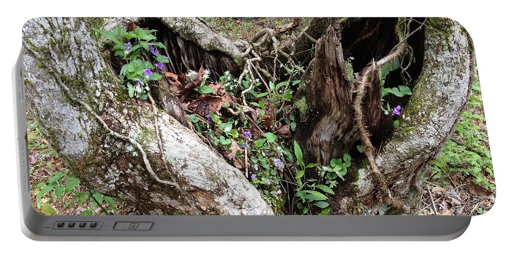 Trees Portable Battery Charger featuring the photograph Heart-shaped Tree by Jan Dappen