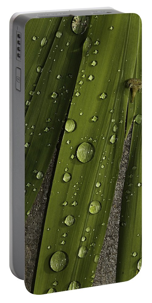 Rain Portable Battery Charger featuring the photograph Heavy Rain by Angela Stanton