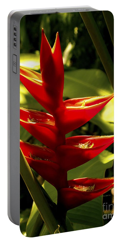 Fine Art Photography Portable Battery Charger featuring the photograph Heliconia II by Patricia Griffin Brett
