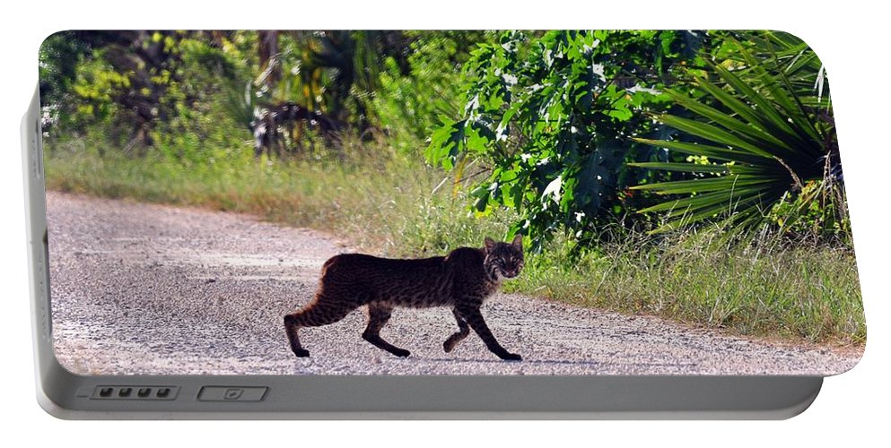 Big Bob Cat Portable Battery Charger featuring the photograph Here Kitty Kitty by Davids Digits