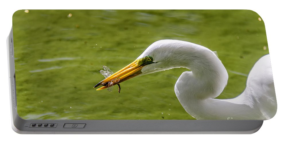 Heron Portable Battery Charger featuring the photograph Heron And Dragonfly by Viktor Birkus