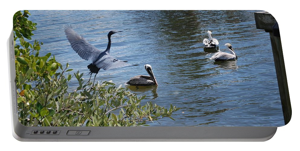 Taking Flight Portable Battery Charger featuring the photograph Heron And Pelicans by Robert Floyd