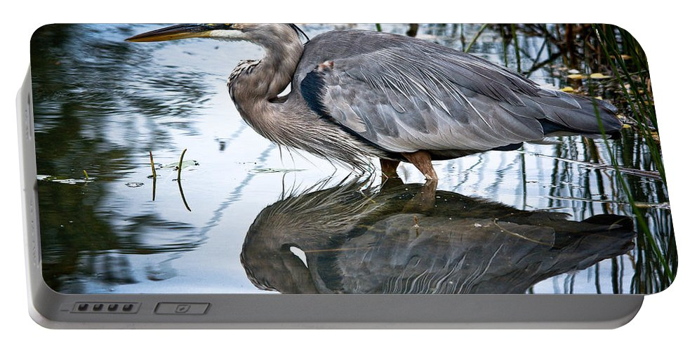Ornithology Portable Battery Charger featuring the photograph Heron Reflecting by Cheryl Baxter
