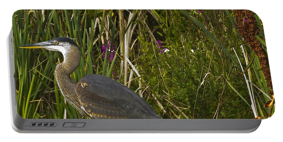 Stork Portable Battery Charger featuring the photograph Heron by Rob Mclean