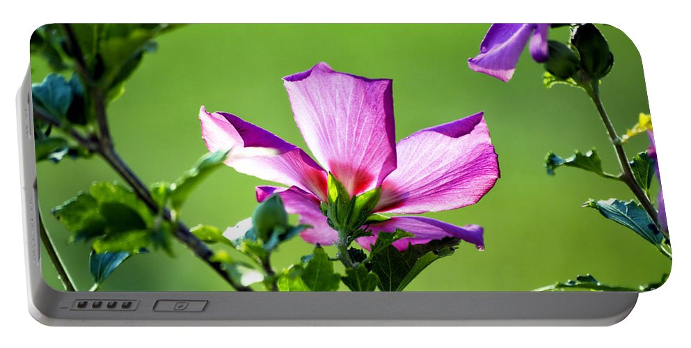 Hibiscus Portable Battery Charger featuring the photograph Hibiscus 04 by Thomas Woolworth