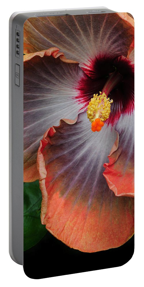 Hibiscus Portable Battery Charger featuring the photograph Hibiscus Key Largo by Dave Mills