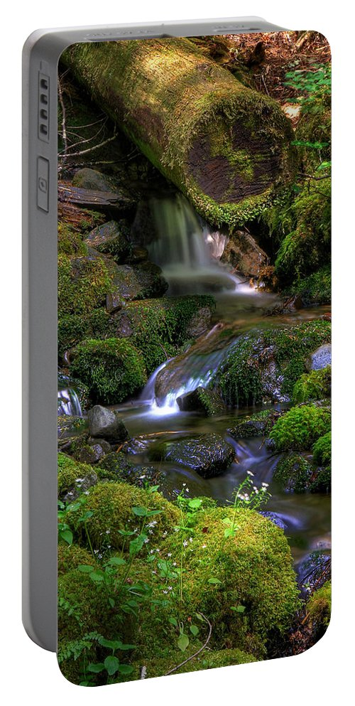 Brook Portable Battery Charger featuring the photograph Hidden Brook by John Absher