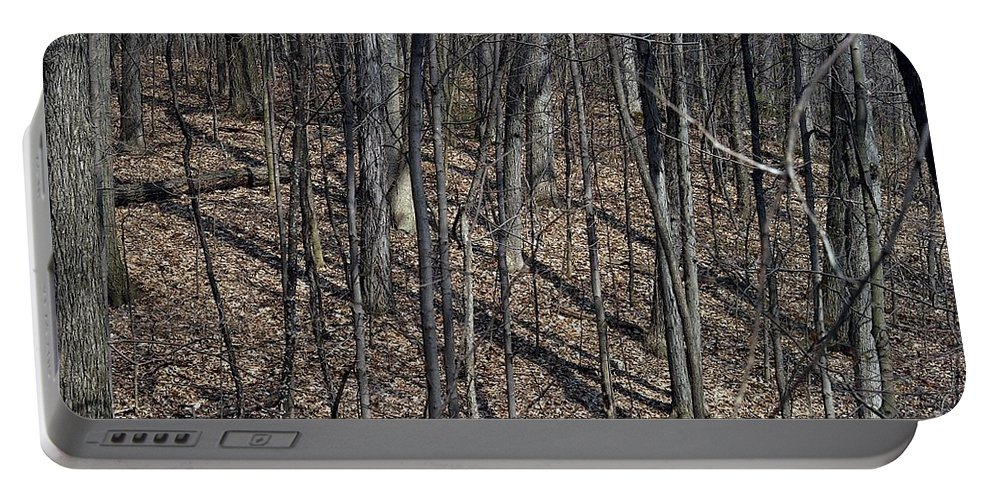 Forest Floor Portable Battery Charger featuring the photograph High Ground by Joseph Yarbrough