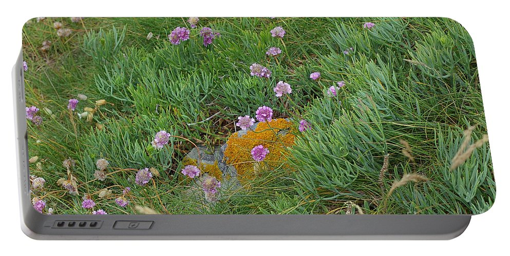 Wildflowers Portable Battery Charger featuring the photograph Hillside Of Wildflowers by Nancy L Marshall