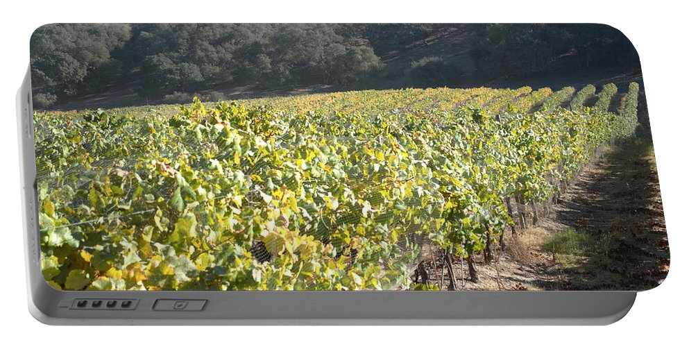 Barbara Snyder Portable Battery Charger featuring the digital art Hillside Vineyard by Barbara Snyder