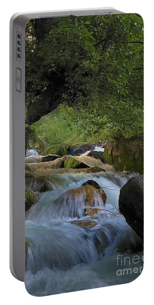 Nina Stavlund Portable Battery Charger featuring the photograph Himalayan Nectar... by Nina Stavlund
