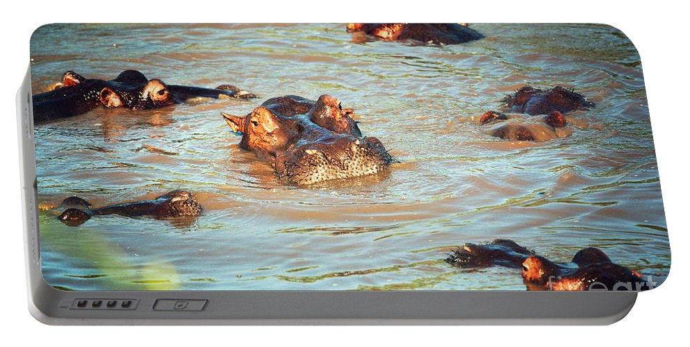 Hippo Portable Battery Charger featuring the photograph Hippopotamus Group In River. Serengeti. Tanzania by Michal Bednarek