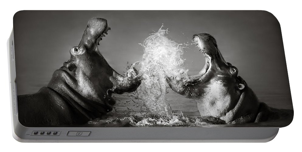 Hippo Portable Battery Charger featuring the photograph Hippo's fighting by Johan Swanepoel
