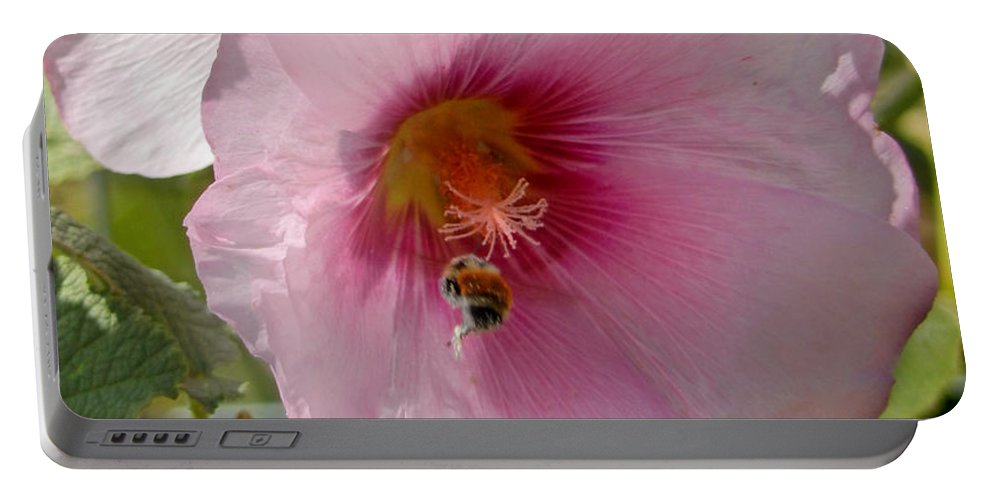 Hollyhock Portable Battery Charger featuring the photograph Hollyhock And Bee by Heather Coen
