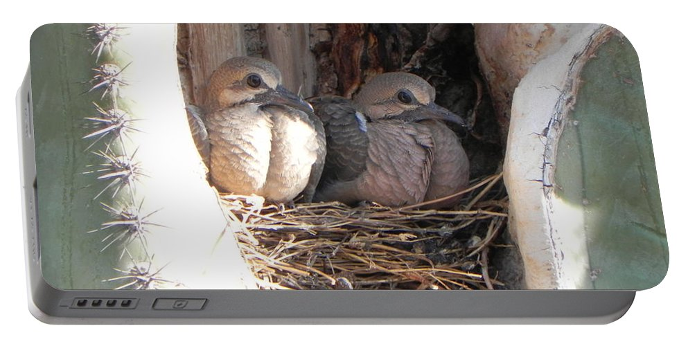 Doves Portable Battery Charger featuring the photograph Home All Alone by Deb Halloran
