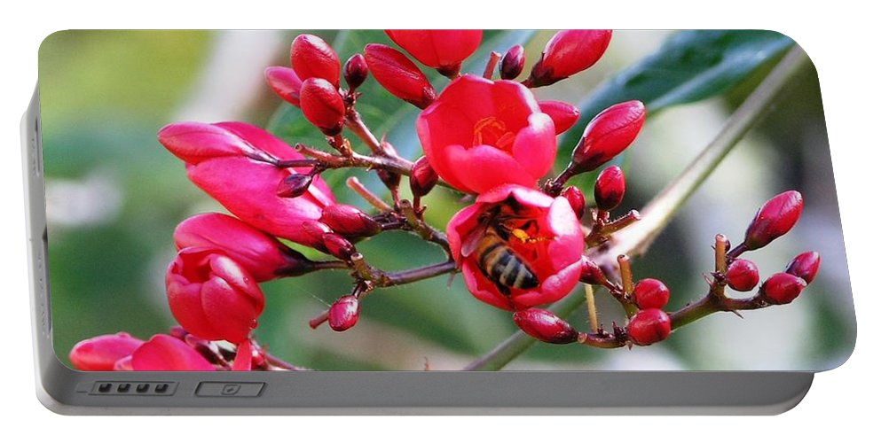 Red Portable Battery Charger featuring the photograph Honey Bee Working by Mary Deal
