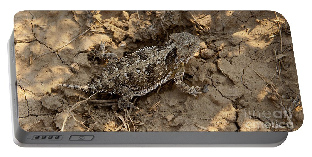 Lizard Portable Battery Charger featuring the photograph Horned Lizard  #8903 by J L Woody Wooden