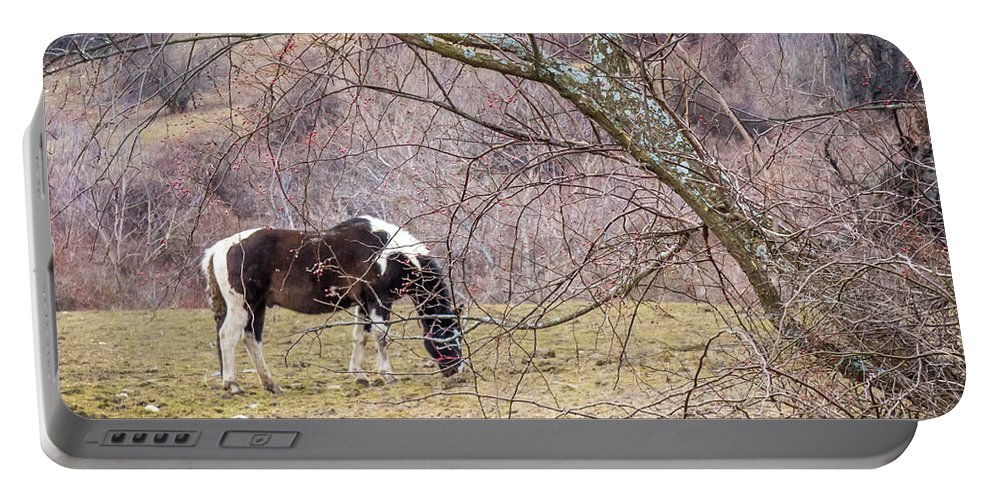 Winter Portable Battery Charger featuring the photograph Horse And Winter Berries by DAC Photo