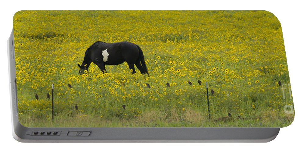 Horse Portable Battery Charger featuring the photograph Horse Birds And Flowers  #8520 by J L Woody Wooden