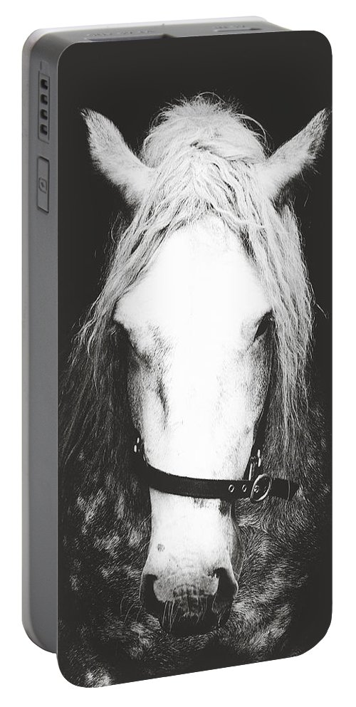 Black And White Horse Photography Portable Battery Charger featuring the photograph Horse by Mareike Von engelbrechen