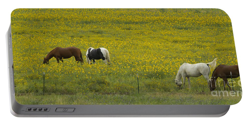 Horsee Portable Battery Charger featuring the photograph Horses And Wildflowers  #8511 by J L Woody Wooden