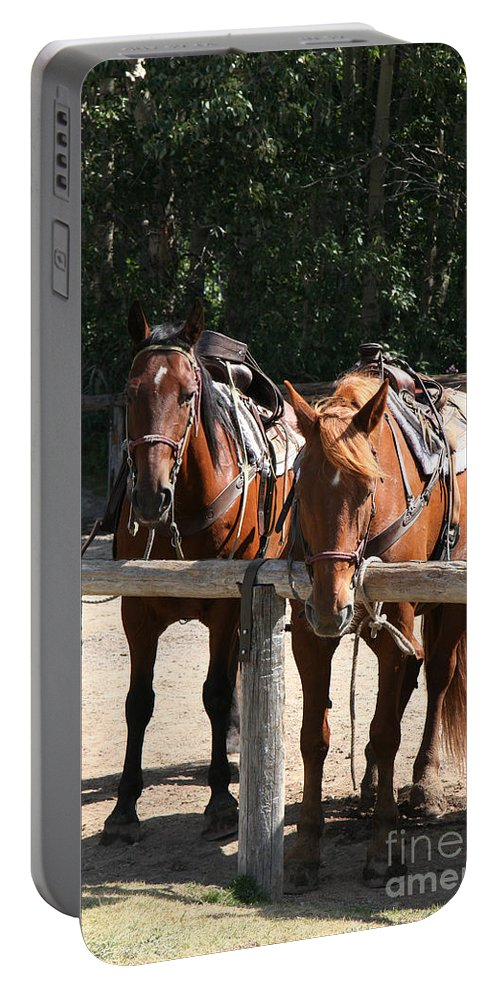 Glacier National Park Portable Battery Charger featuring the photograph Horses Glacier National Park Montana by Jason O Watson