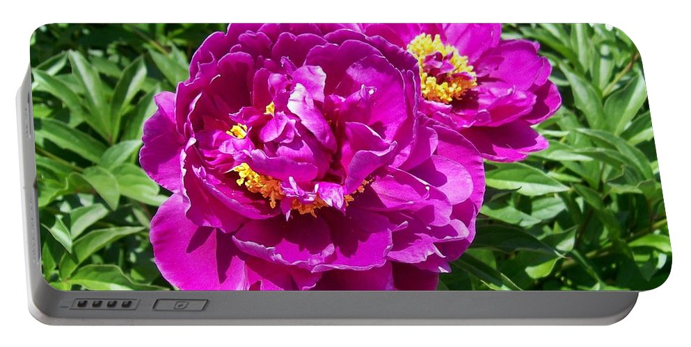 Pink Portable Battery Charger featuring the photograph Hot Pink Peonies by Laurie Eve Loftin