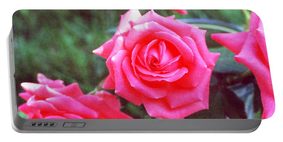 Roses Prints Portable Battery Charger featuring the photograph Hot Summer Bouquet by Alys Caviness-Gober